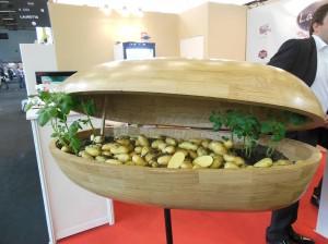 Jardin de pommes de terres d'intérieurs