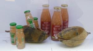 Nectar et energy juice de Baobab